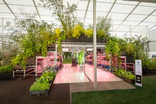 The garden will be exhibited at the Participatory Theatre in Barking and Dagenham on 25 June. / IKEA