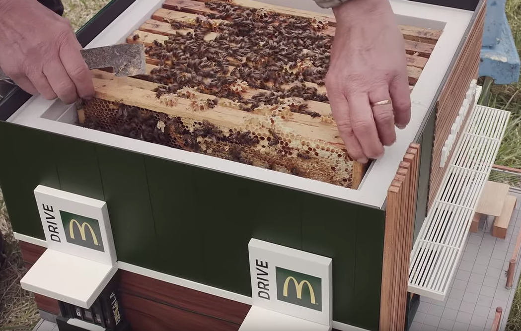 The full working beehive was auctioned for US$10,000 on World Bee Day / McDonalds