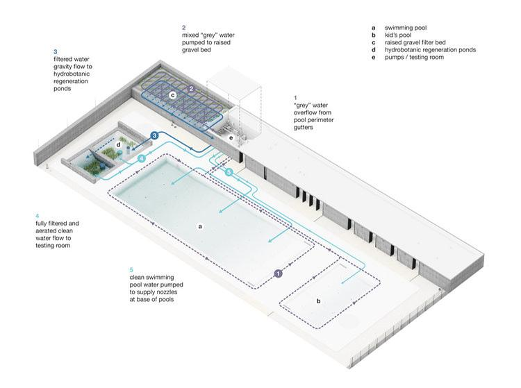 A simple plan showing all the important parts of the natural swimming pool / gh3 architecture