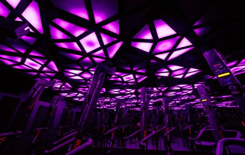 The lighting displays are coupled with a system for controlling visuals / Cactus