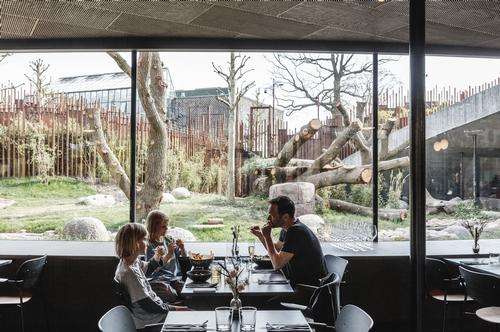 There is a restaurant on the lower level where visitors can look into the enclosure while eating / Bjarke Ingels Group