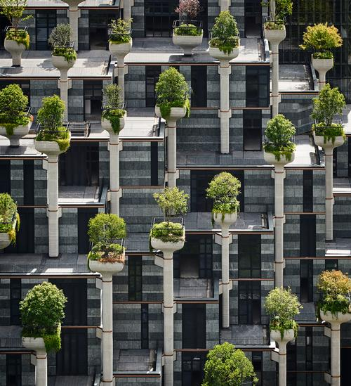 The building's hundreds of structural support columns double as podiums with large planters built into the top / Qingyan Zhu