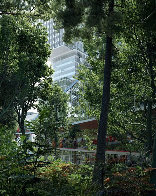 A five-storey co-working building will be built to wrap around the forest / Proloog
