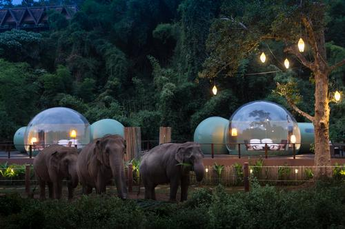 The bubbles are 4.5m (14.8ft) in diameter and provide 22sq m (237sq ft) of floor space / Anantara Golden Triangle Elephant Camp & Resort