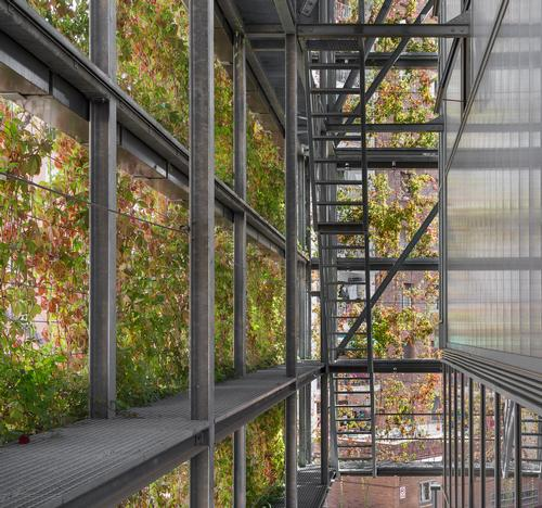 The façade also creates a bioclimatic space and introduces additional biodiversity to the local area / Enric Duch