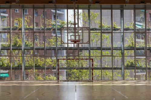 The building's greenery-covered façade shields it from the sun / Enric Duch