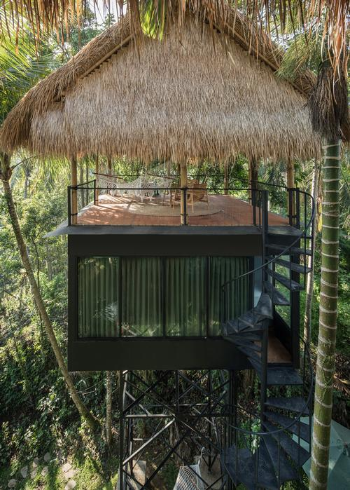 The raised rooms offer views of the surrounding forest and are elevated away from mosquito shrub / kiearch