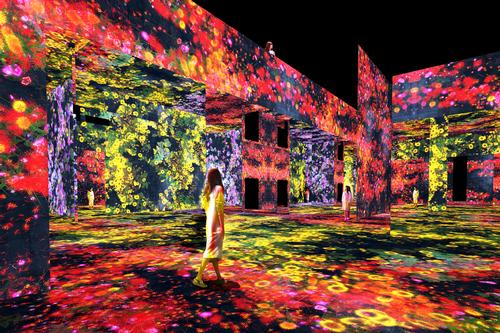 Mountain of Flowers and People: Lost, Immersed and Reborn, 2020, Interactive Digital Installation, Endless, sound: Hideaki Takahashi / teamLab