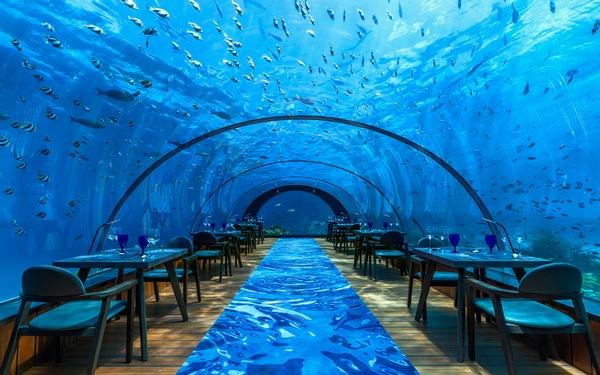 5.8 restaurant at the Hurawalhi resort in the Maldives features a simple arched design