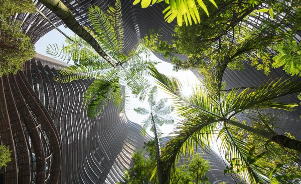 The Green Heart at the centre of the Marina One development in Singapore