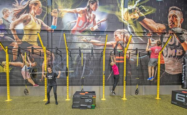 Functional training zones have become a popular part of the sites
