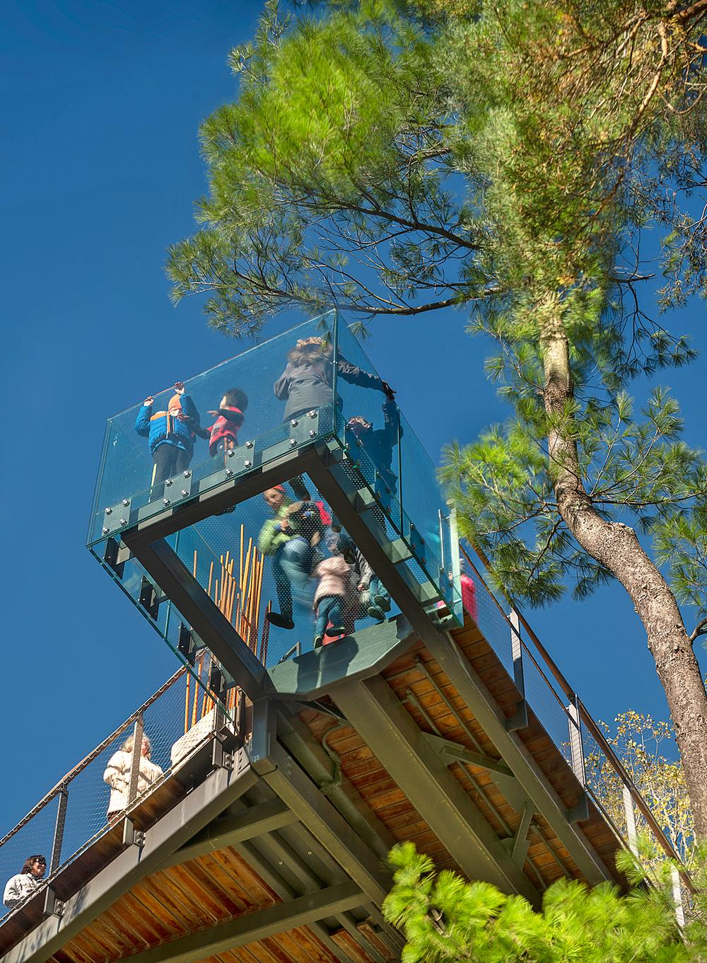 The orchard view platform has a glass floor and railings at 40ft-high