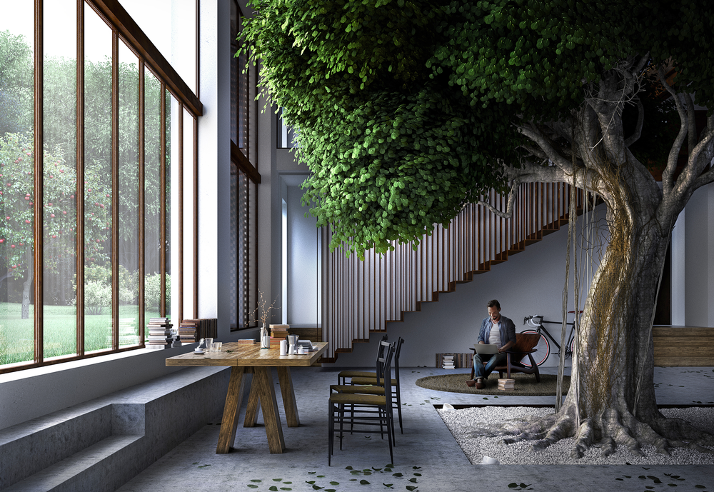 A series of interconnected rooms on different levels are arranged around the main living space, which houses the ficus tree