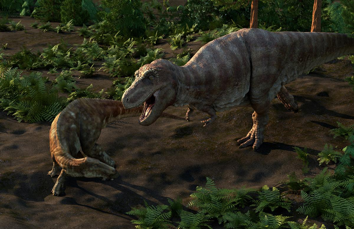 The company worked closely with the museum's resident paleontologists to ensure scientific accuracy
