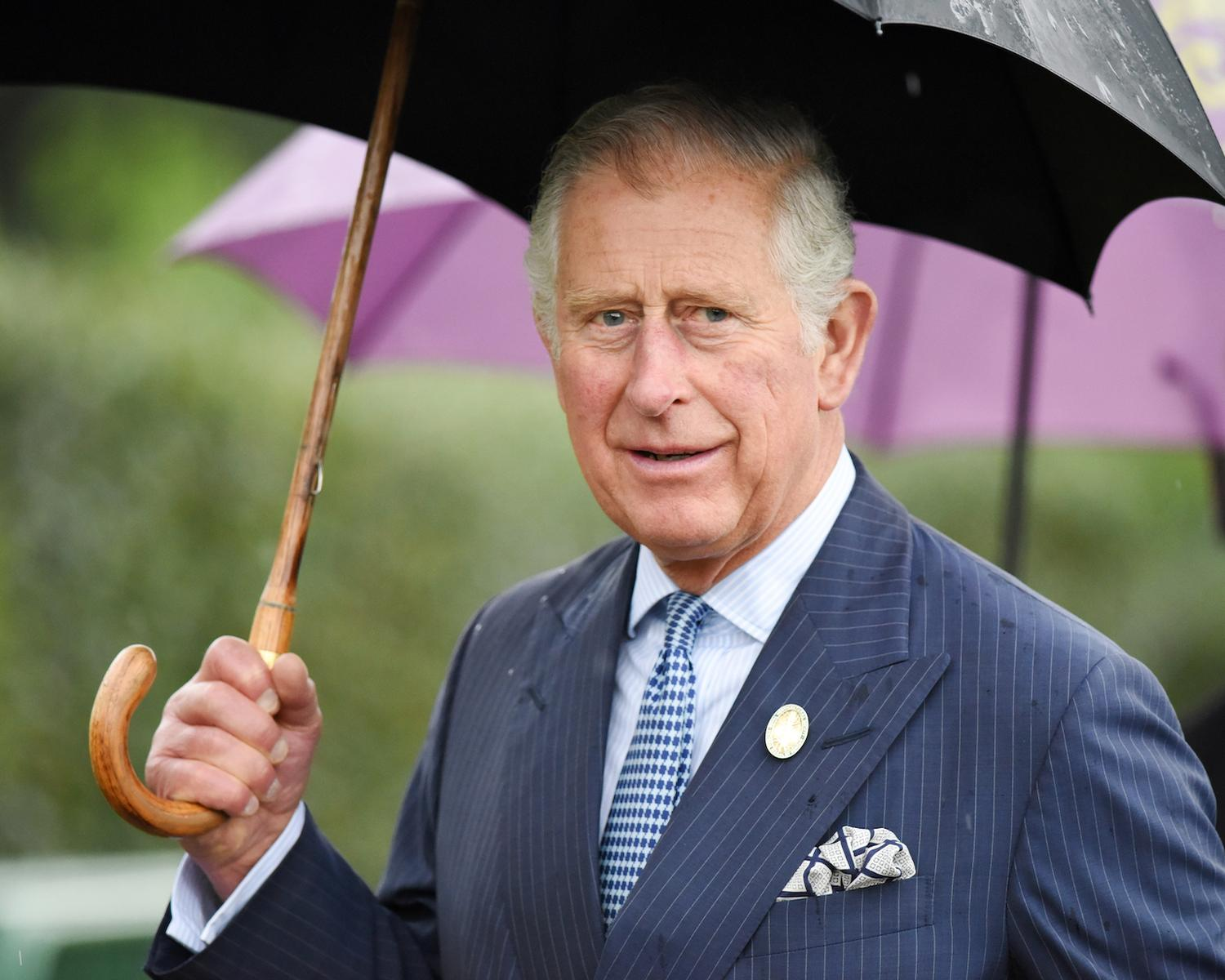 Prince Charles says yoga can contribute to 'health and healing' / Shutterstock/765355024