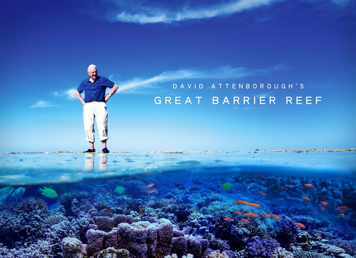 Atlantic has worked on several high profile projects, including documentaries with Sir David Attenborough