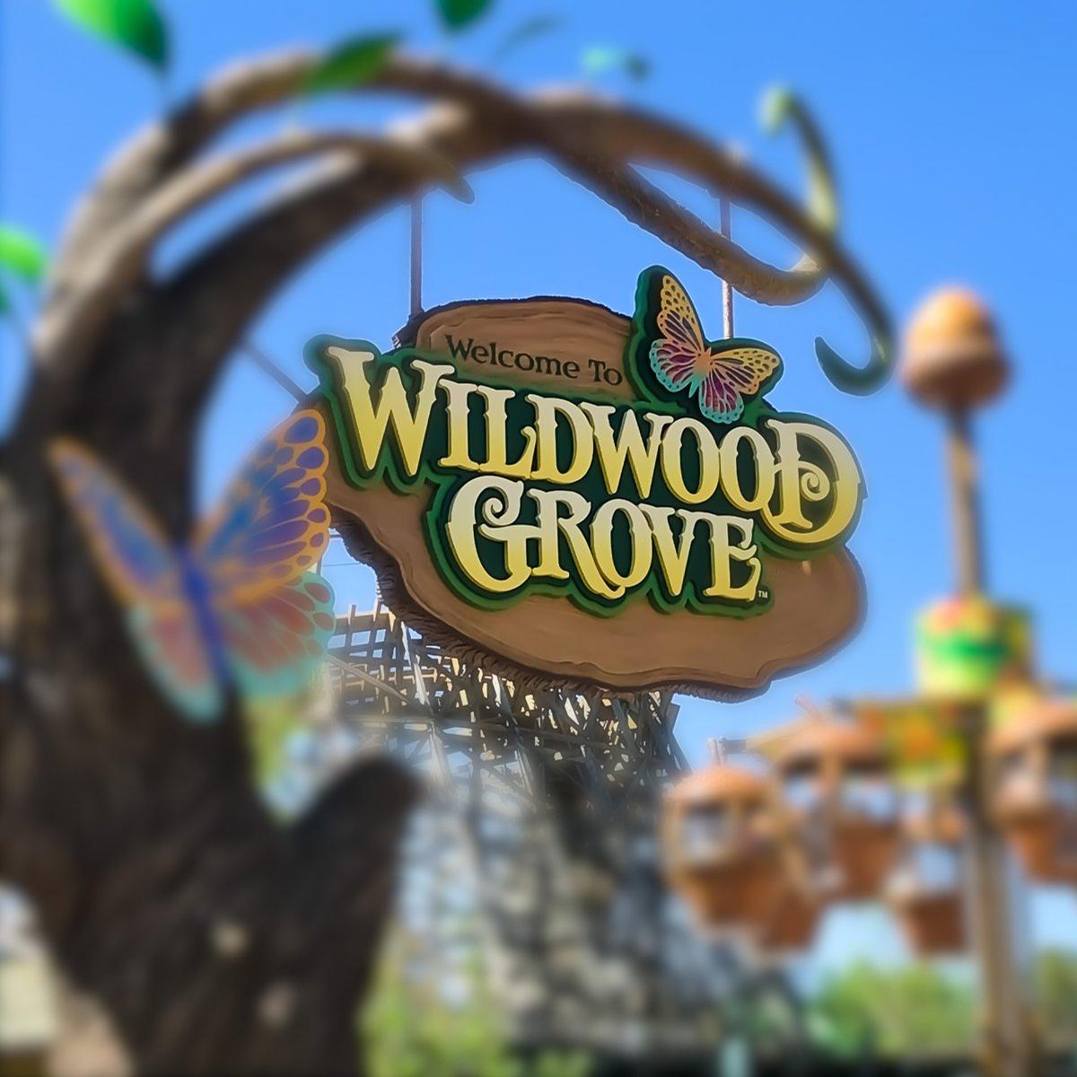 Wildwood Grove is the first expansion of the theme park since 2008 / Dollywood via Twitter