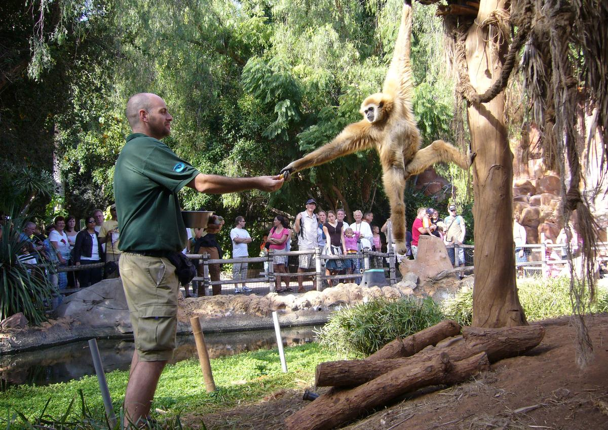 The zoo's new model will see €64.6m invested in an 'animalist' approach, which will include a focus on primate conservation