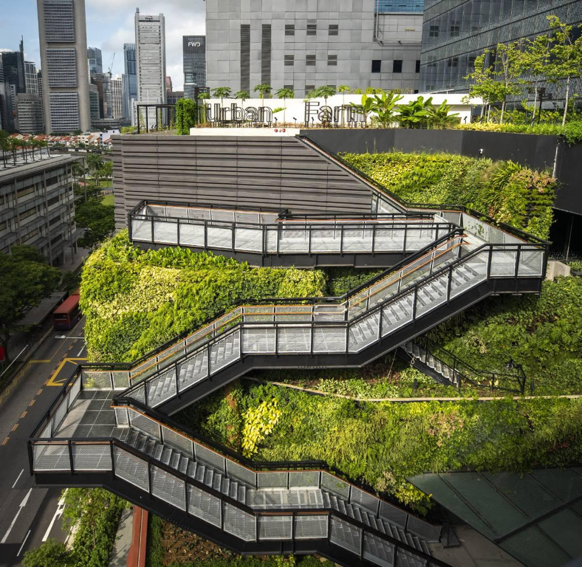 Additionally, the property has a rooftop garden with edible plants / Capitaland