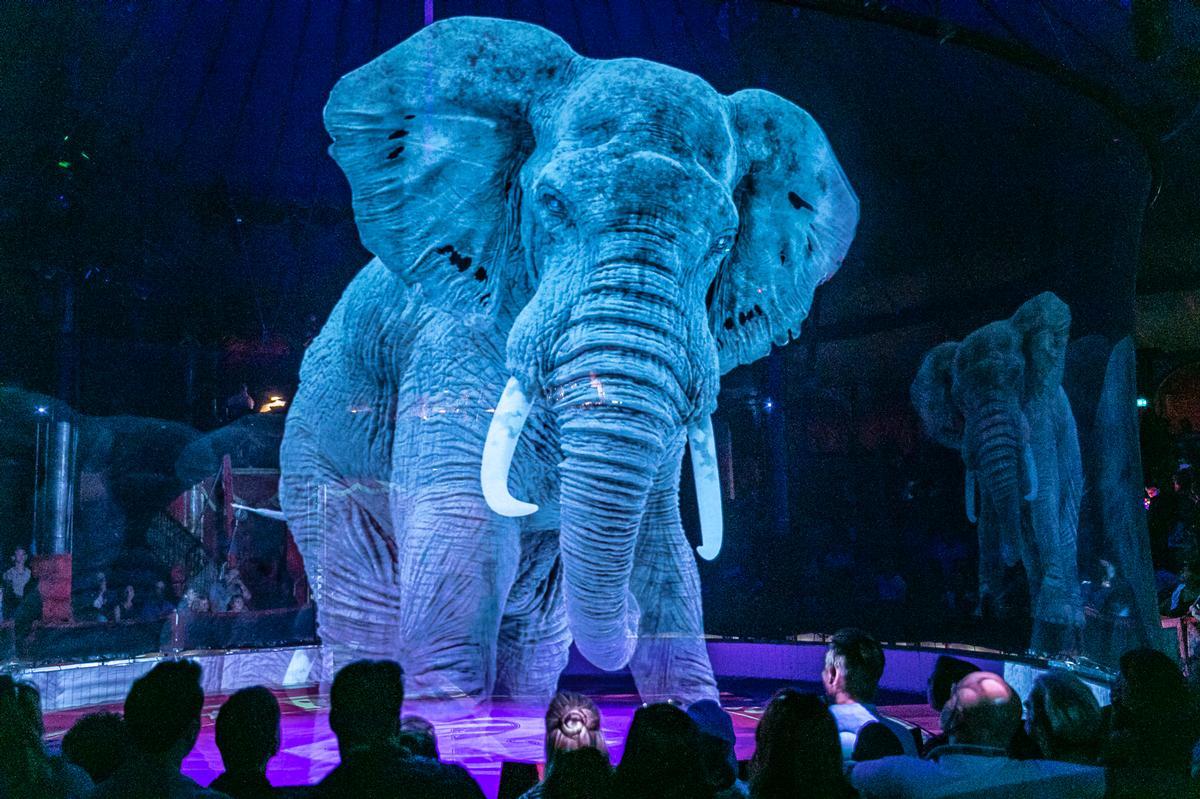 3D holographic animals perform a series of circus tricks / Circus Roncalli