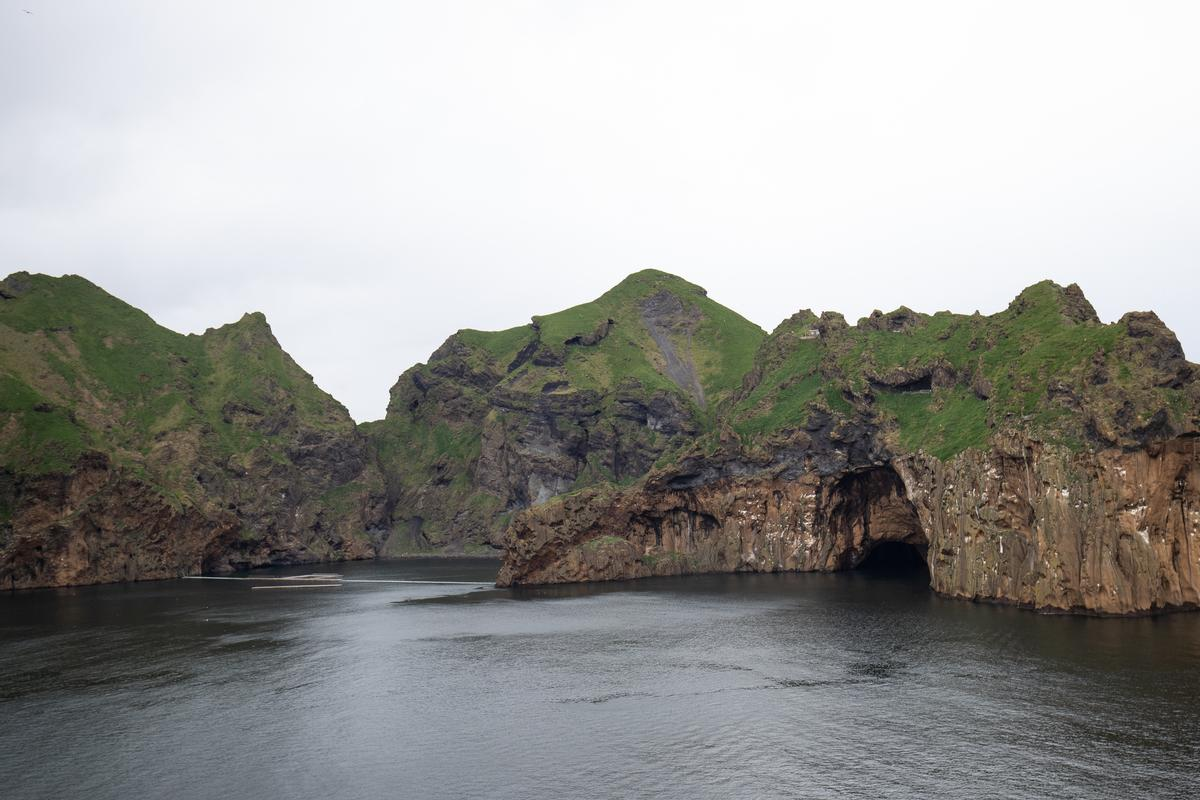 Klettsvik Bay in southern Iceland, where the whales will live