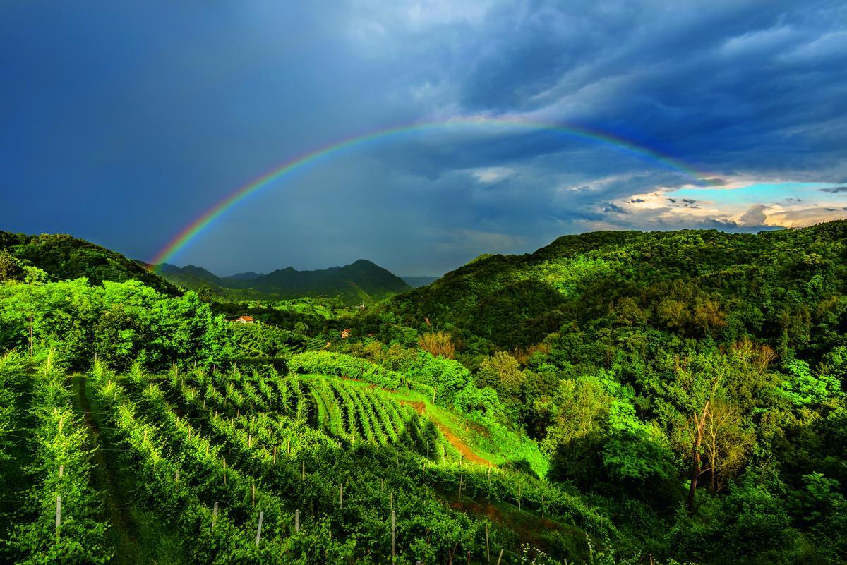 Stunning scenery in the Prosecco growing area of northeastern Italy / Unesco / Consorzio Tutela del Vino Conegliano Valdobbiadene Prosecco Superiore Docg