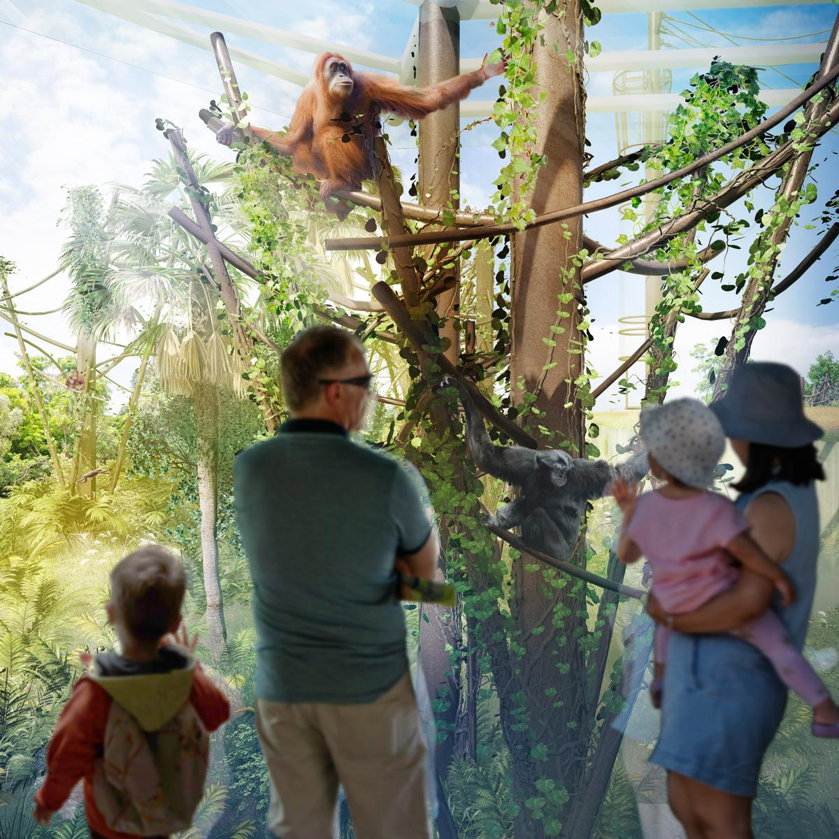 Auckland Zoo promises an immersive experience for visitors / Auckland Zoo