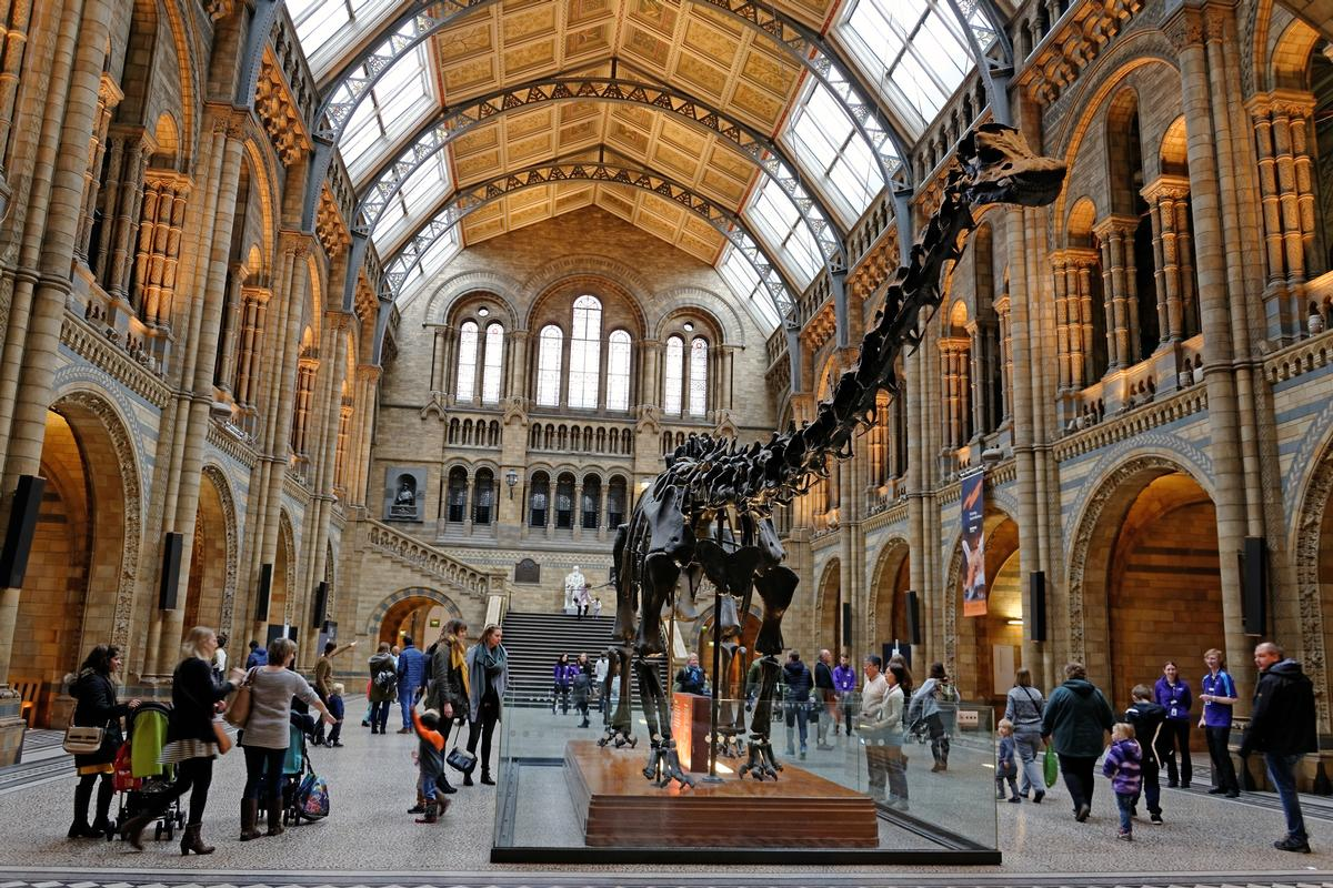Funding cuts from central and regional governments over a number of years have left many UK museums with maintenance and repair backlogs / Shutterstock