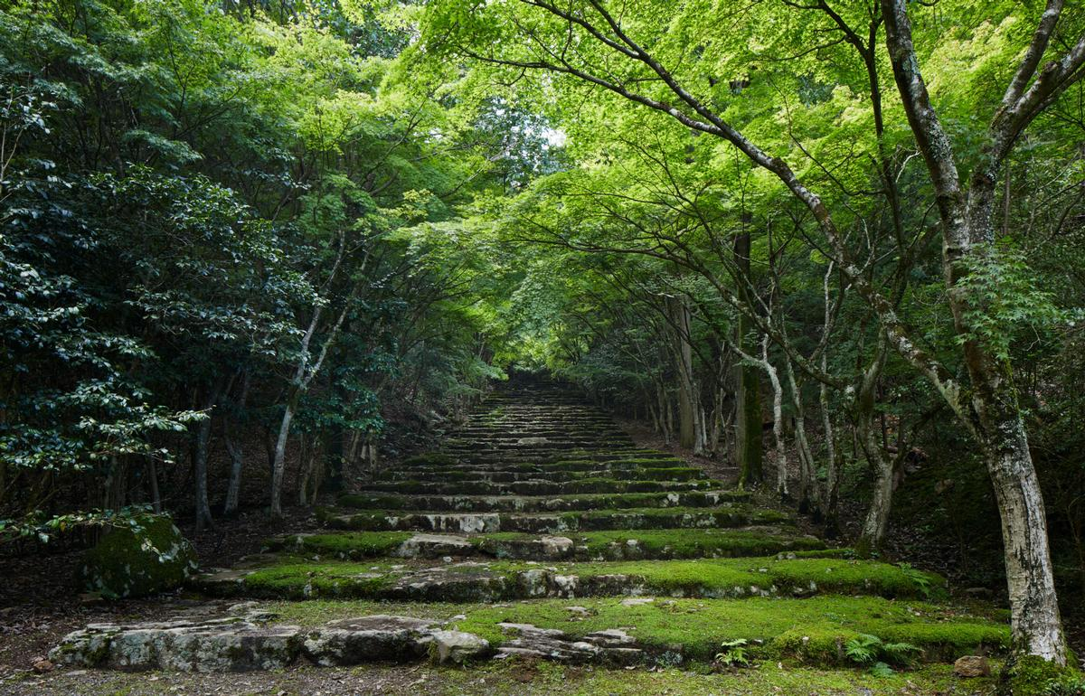 The 80-acre Aman Kyoto site comprises 72 acres of permanent forest and eight acres of impeccably kept gardens play a starring role at the resort