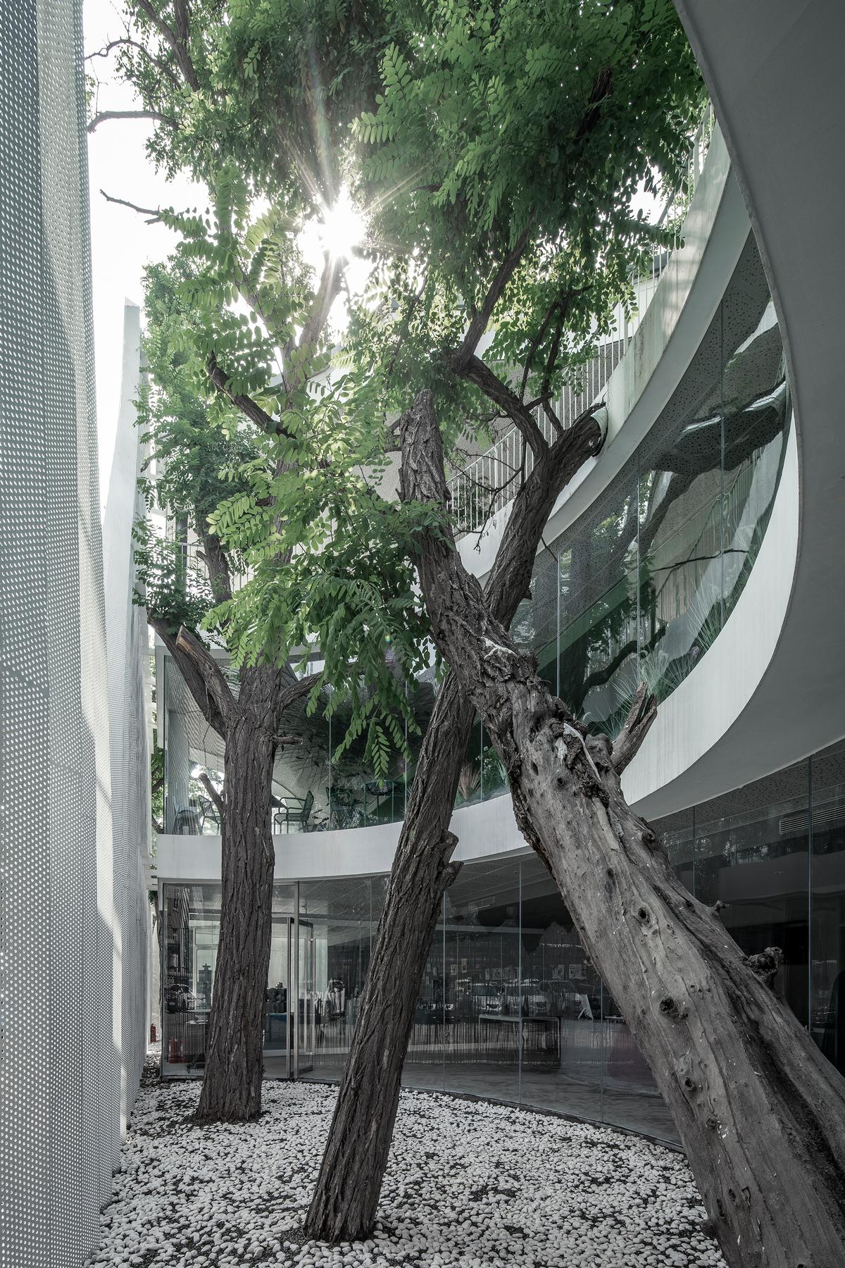 Throughout the building, greenery contrasts with starker concrete elements / Jin Weiqi