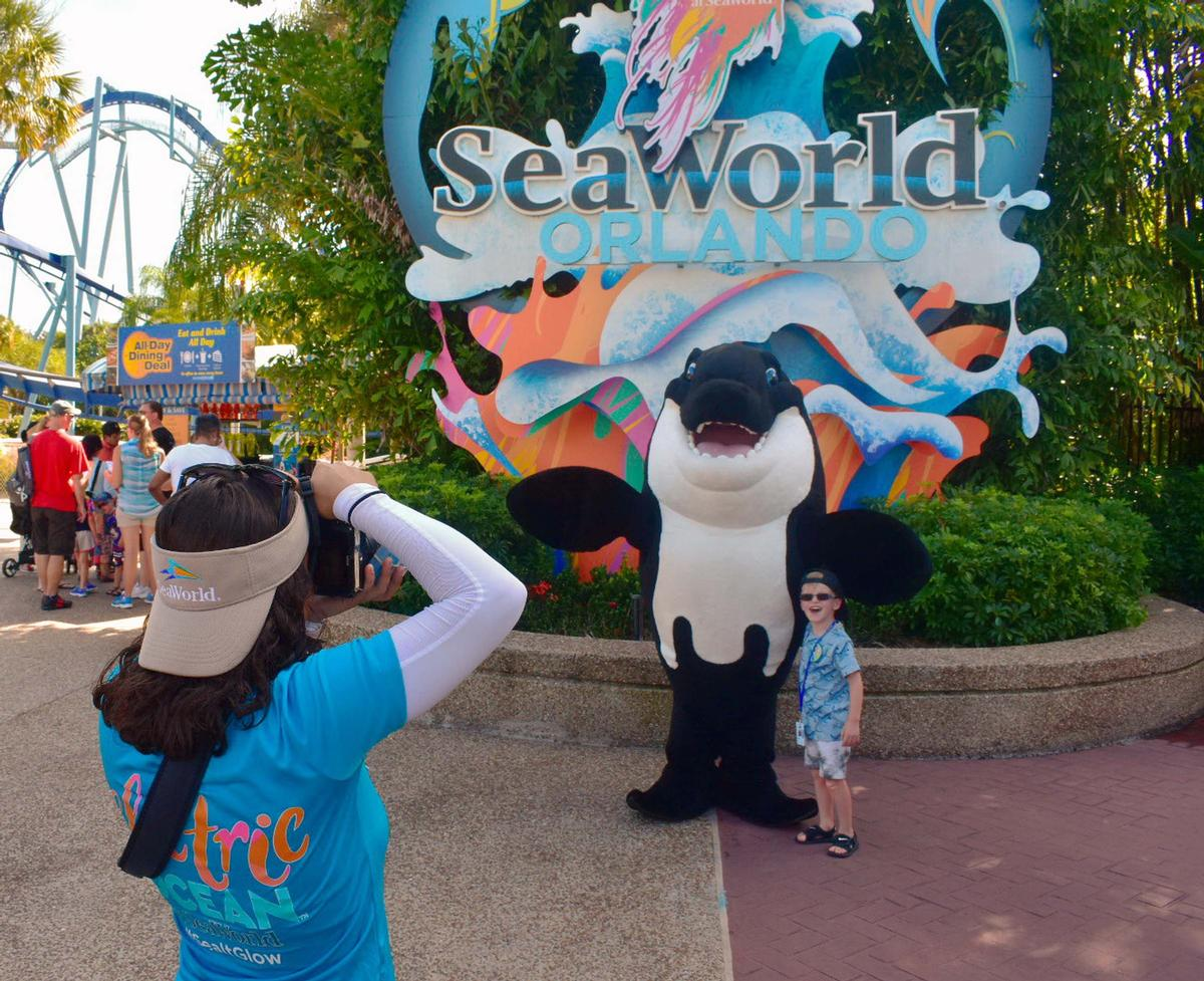 Visitor numbers at SeaWorld Orlando were negatively impacted by Hurricane Dorian / Shutterstock