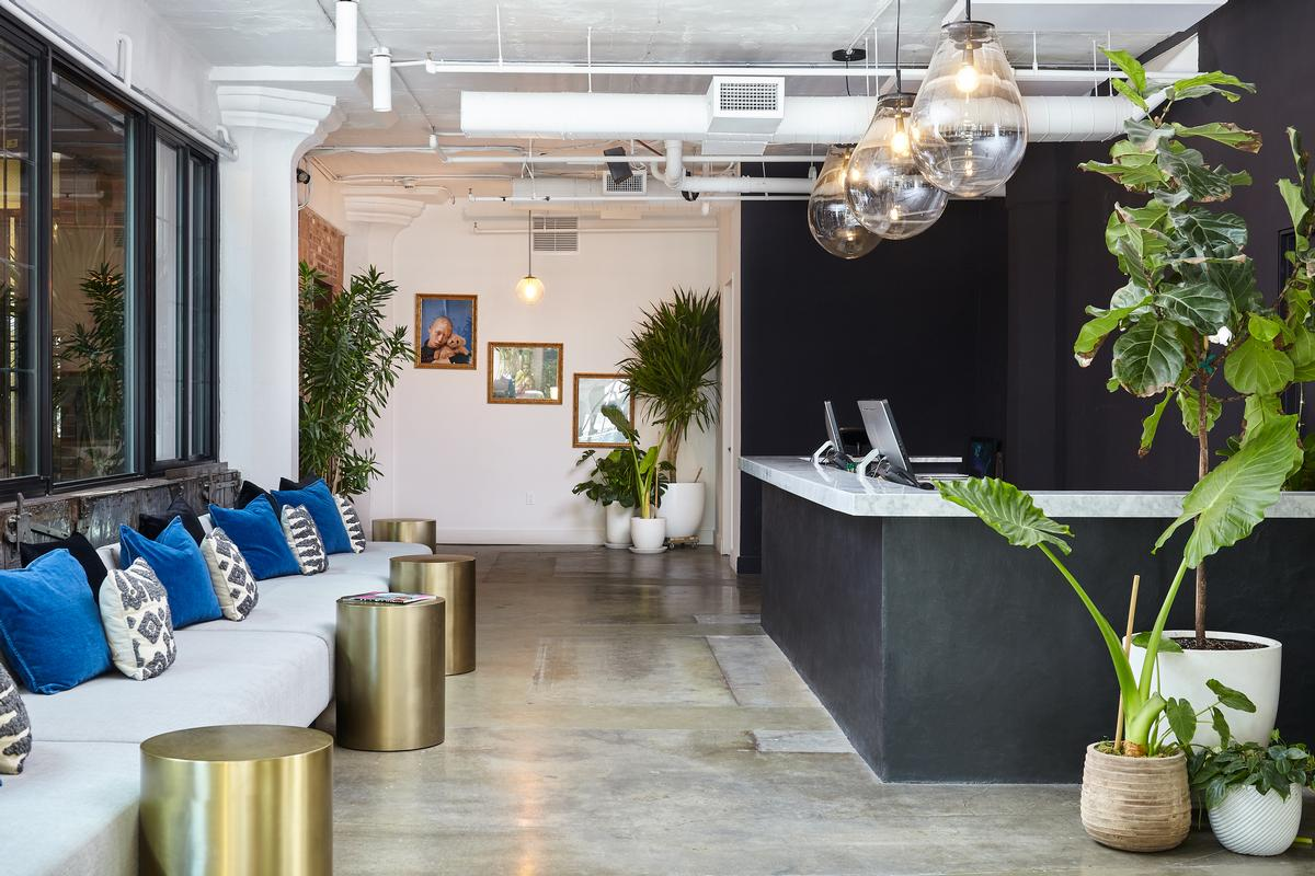 A bright, open-plan lobby has a reception area with seating / The Collective