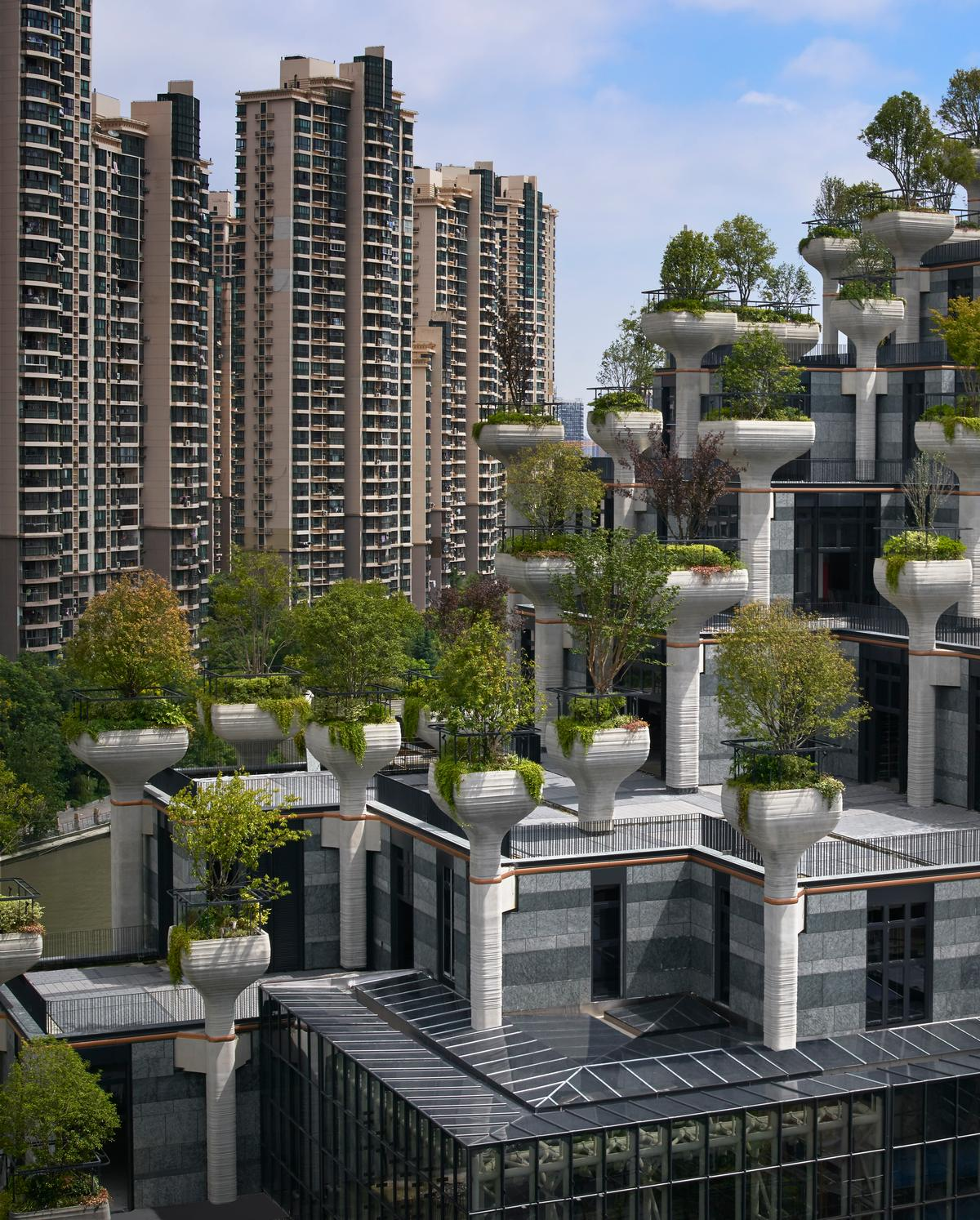 The building's edges are lowered to minimise its impact on the surrounding area / Qingyan Zhu