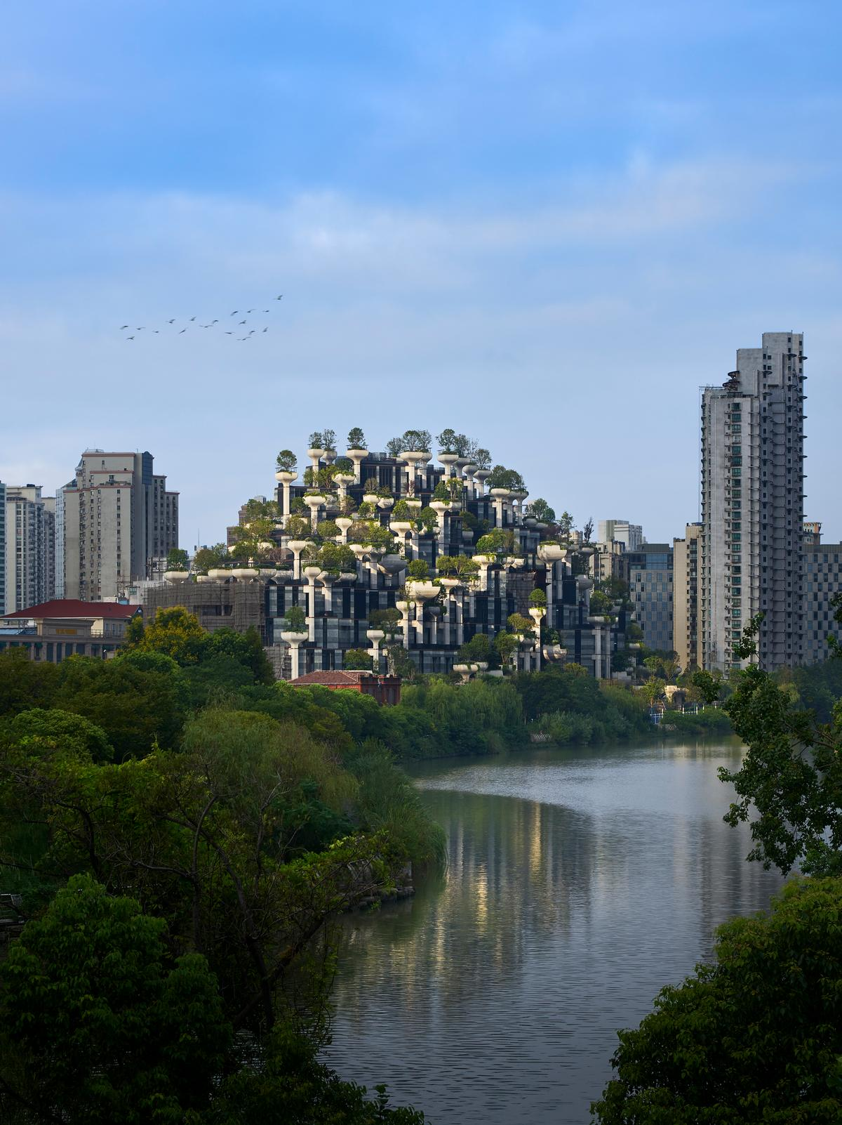 1000 Trees is scheduled to be completed in 2020 / Qingyan Zhu