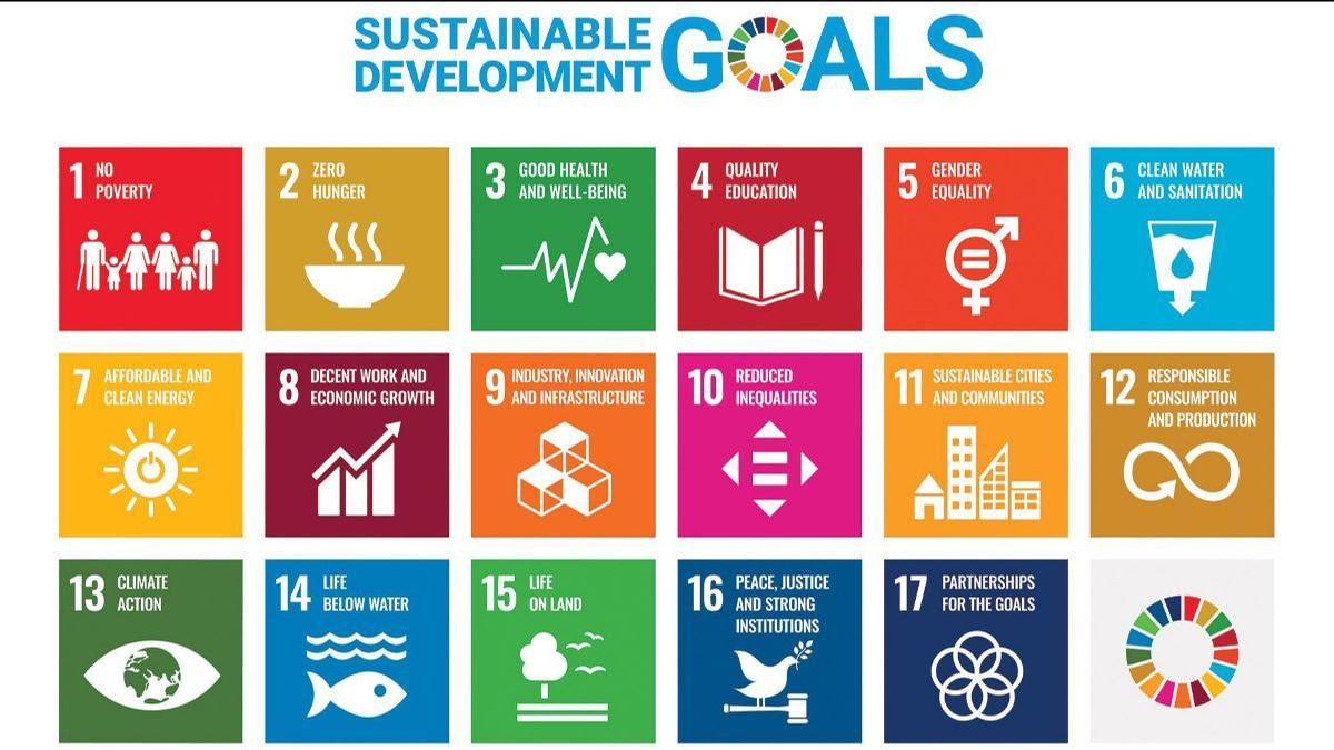 The 17 SDGs are included in the <i>UN's 2030 Agenda for Sustainable Development</i>, agreed by 193 states.