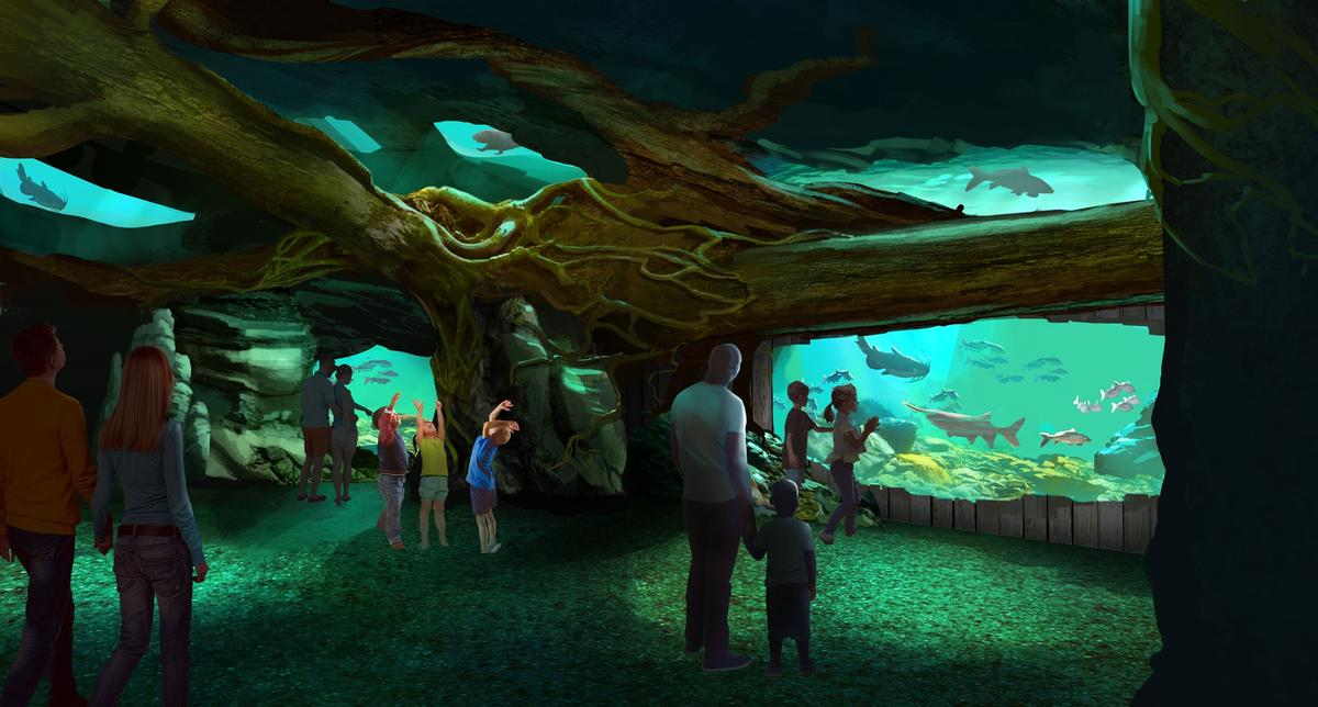 The aquarium is home to more than 13,000 aquatic animals / St. Louis Aquarium / PGAV Destinations