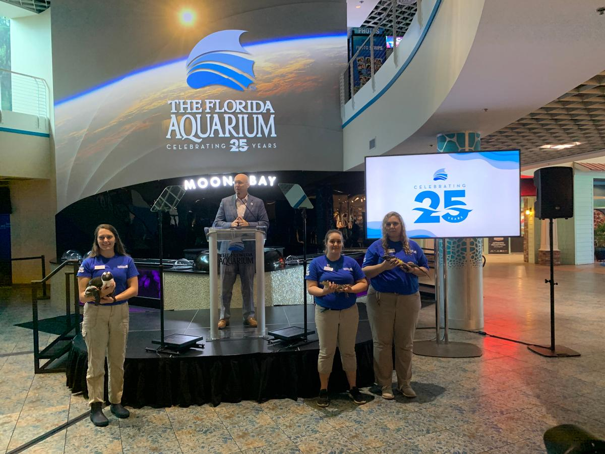 President and CEO Roger Germann has announced a raft of new initiatives for The Florida Aquarium, as it reaches 25 years old / The Florida Aquarium
