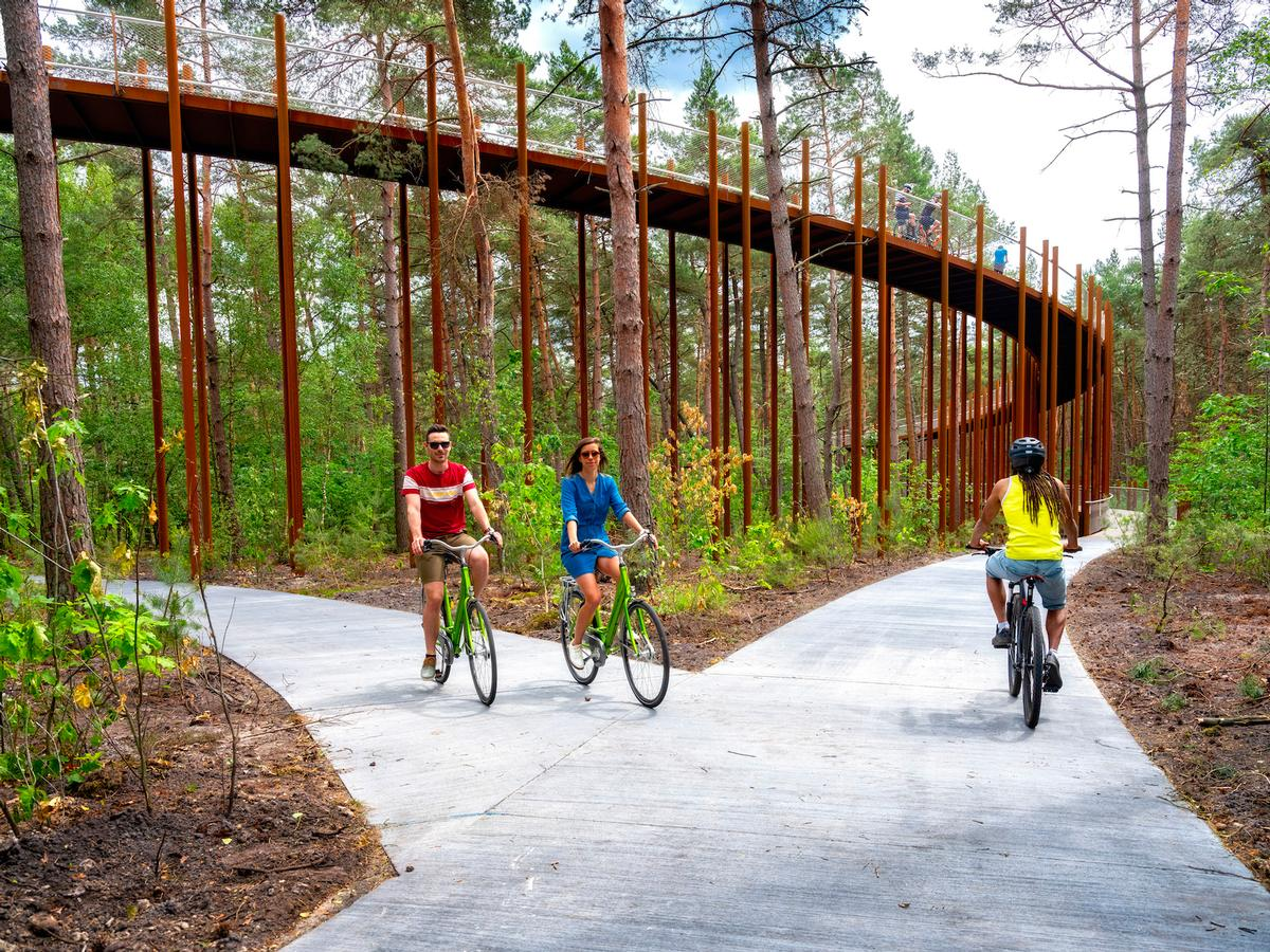 Two other interventions, Cycling through the Heathland and Cycling Underground, are in the works / VisitLimburg.be