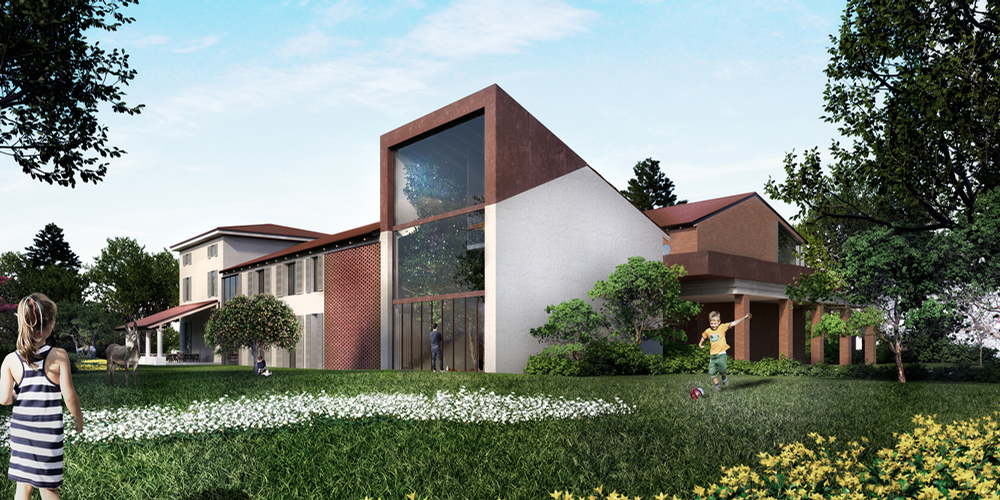 The design for the farmhouse has been organised around the 50-year-old tree