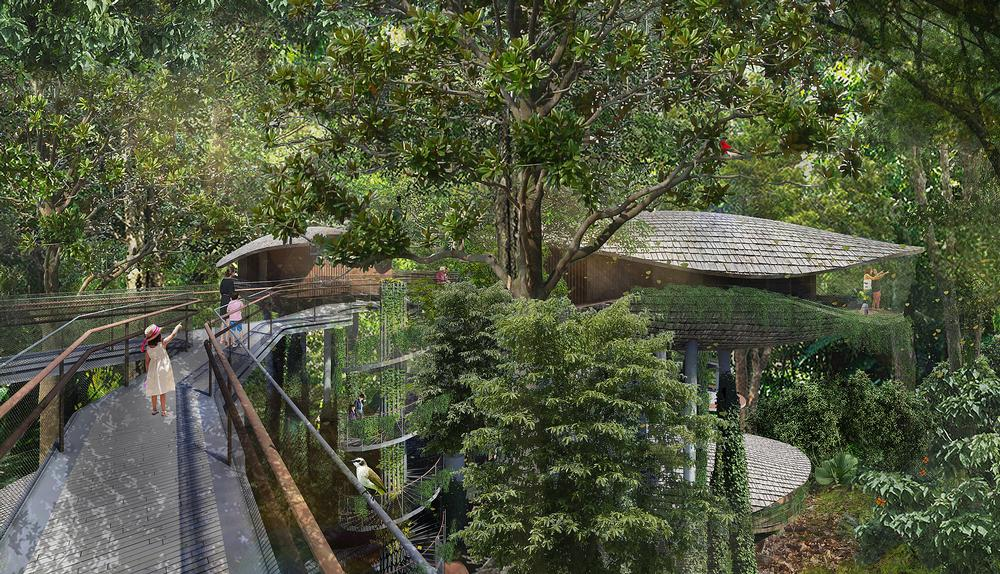 Elevated walkways and guided tours will allow resort guests to explore the forest / Image: Mandai Park Holdings