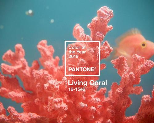 'Sociable' and 'energising' Living Coral selected as Pantone's Colour of the Year