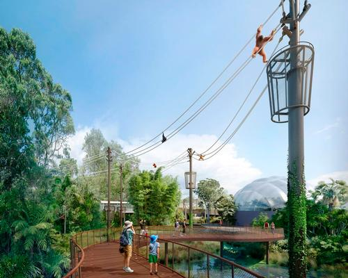 Aerial pathways for arboreal primates stretch between a series of 23m-high poles / Auckland Zoo