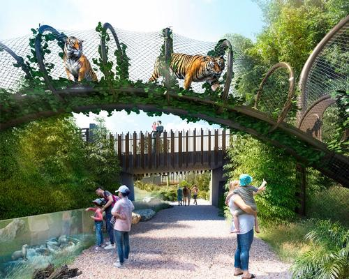 The lowland habitat includes elevated vantage points for tigers