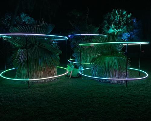 HALO tree lighting in Queen's Gardens