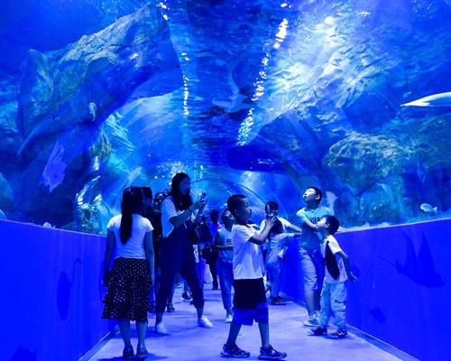 Visitors to the Xining aquarium, pictured on opening day (18 August)