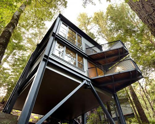 Details revealed for Canyon Ranch's upcoming retreat in the Redwoods