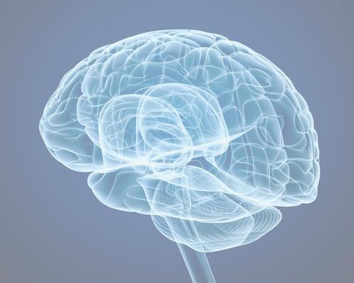 New York's Blum Center offers brain optimisation programme