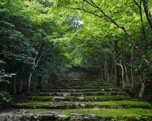 Onsen and forest bathing underpin Aman's third Japanese site