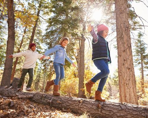 The research revealed that children's wellbeing increased after they had spent time connecting with nature / Shutterstock
