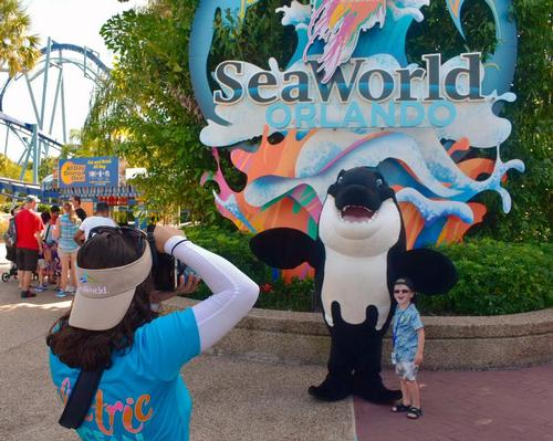 Visitor numbers at SeaWorld Orlando were negatively impacted by Hurricane Dorian